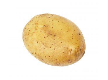 Les patates sont plantées